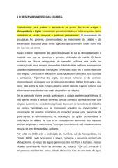 1_o_desenvolvimento_das_cidades_egito_mesopotamia.doc