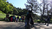 Roaring Camp com17.mov