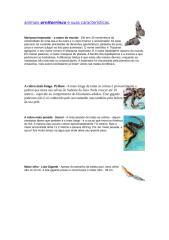 animais ornitorrinco e suas caracteristicas.doc