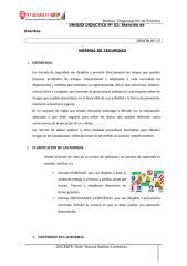SEPARATA Nº 15 - NORMAS DE SEGURIDAD.doc